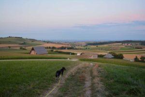auf-dem-ipf-in-bopfingen-copyright-hund-im-gepaeck-6