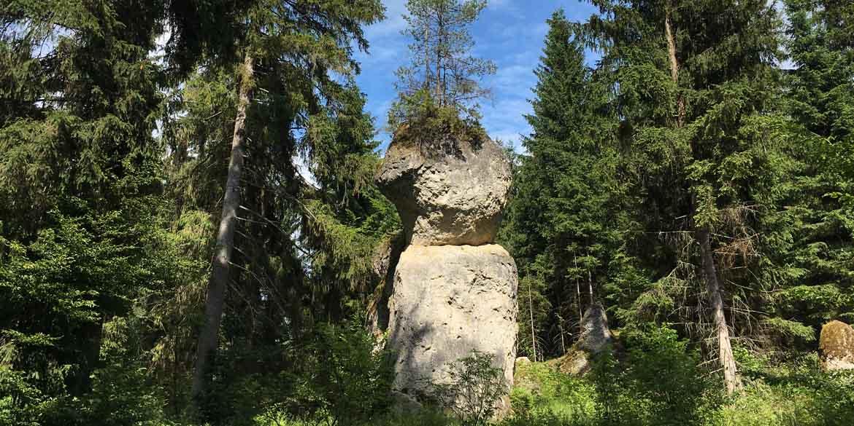 felsenmeer-baden-wuerttemberg-copyright-hund-im-gepaeck