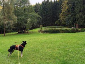 skulpturenweg-niederalfingen-copyright-hund-im-gepaeck-7
