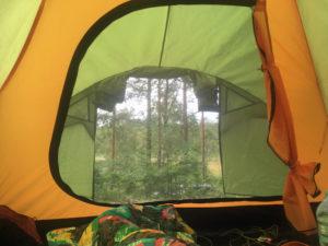 Unsere Aussicht aus dem Zelt in den wald vom Hätteboda Vildmarkscamping