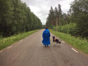 Wandernd unterwegs auf einer Landstraße bei Hätteboda
